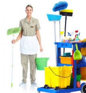 Daily Cleaning Services
